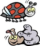 Ilustração do vetor dos desenhos animados de um joaninha e de um caracol Fotos de Stock