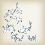 A ilustração do vetor do koi da carpa ajustou elementos do projeto do esboço ilustração do vetor
