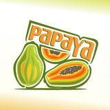 Ilustração do vetor no tema da papaia Foto de Stock Royalty Free