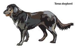 Ilustração do vetor do pastor do cão Fotos de Stock