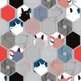 Ilustração do vetor do porco facescombined com elementos do hexágono ilustração stock