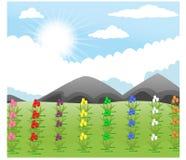 A ilustração do vetor do tulipas bonitas jardina com fundo da montanha ilustração stock