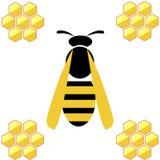 Ilustração do vetor Vespa com favos de mel, sobre o fundo branco ilustração stock