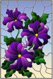 Ilustração do vitral com as três flores roxas brilhantes do petúnia, dos botões e das folhas em um fundo azul Fotos de Stock