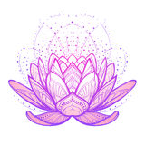Ilustração do zen da flor dos lótus Desenho linear estilizado intrincado no fundo branco Fotografia de Stock
