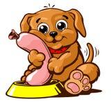 Ilustração doméstica do vetor do animal de estimação do cachorrinho Imagem de Stock Royalty Free
