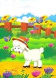 Ilustração dos desenhos animados com os carneiros na exploração agrícola - illu Fotografia de Stock