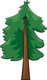 Ilustração dos desenhos animados da árvore das coníferas Imagem de Stock Royalty Free