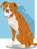 Ilustração dos desenhos animados do cão do pugilista Fotos de Stock