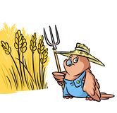 Ilustração dos desenhos animados do campo de grão do fazendeiro do pássaro do pardal Imagens de Stock Royalty Free