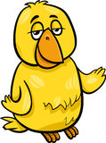 Ilustração dos desenhos animados do caráter do pássaro amarelo Imagem de Stock Royalty Free