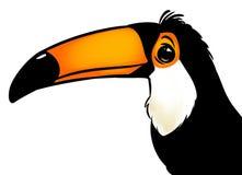 Ilustração dos desenhos animados do tucano do pássaro Fotos de Stock