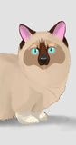Ilustração dos desenhos animados dos animais dos caráteres do gato Foto de Stock