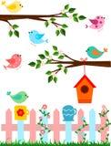 Ilustração dos desenhos animados dos pássaros fotografia de stock royalty free