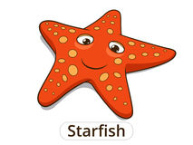 Ilustração dos desenhos animados dos peixes de mar da estrela do mar Imagem de Stock Royalty Free