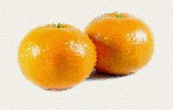 Ilustração dos dois mandarino deliciosos Foto de Stock Royalty Free