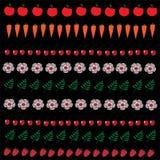 Ilustração dos frutos, dos vegetais e das flores ajustados Fotos de Stock