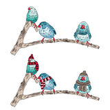 a ilustração dos mesmos pássaros aquece-se vestido e despido ilustração do vetor