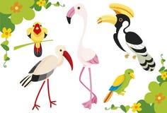 Ilustração dos pássaros Fotos de Stock