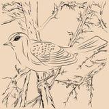Ilustração dos pássaros na floresta Imagem de Stock Royalty Free