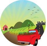 Ilustração dos produtos frescos da exploração agrícola Imagens de Stock Royalty Free