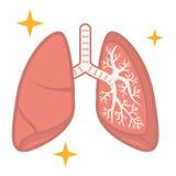 Ilustração dos pulmões saudáveis ilustração stock