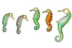 Ilustração dos seahorses Foto de Stock