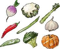Ilustração dos vegetais Fotos de Stock