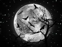 Ilustração e pássaros da lua do vetor Fotos de Stock Royalty Free