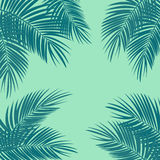 Ilustração em folha de palmeira do fundo do vetor ilustração royalty free