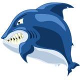 Tubarão irritado Imagens de Stock Royalty Free
