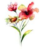 Ilustração estilizado da aquarela das flores Imagem de Stock Royalty Free