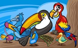 Ilustração exótica dos desenhos animados do grupo dos pássaros Fotografia de Stock