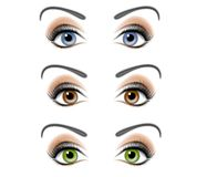 Ilustração fêmea dos olhos humanos ilustração royalty free