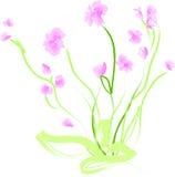 Ilustração floral Imagens de Stock Royalty Free