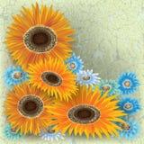 Ilustração floral abstrata Foto de Stock Royalty Free