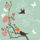 Ilustração floral do fundo Foto de Stock