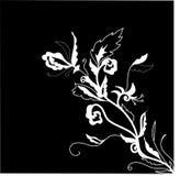 Ilustração floral preto e branco Fotos de Stock Royalty Free