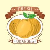 Ilustração fresca do vetor do crachá das laranjas das tangerinas Imagem de Stock Royalty Free