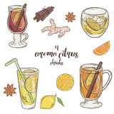 A ilustração imprimível do vetor com grupo de copo do citrino bebe Contains ferventou com especiarias o vinho, o perfurador, a li Imagens de Stock Royalty Free