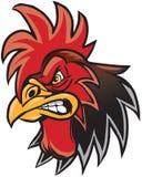 Ilustração irritada da cabeça da mascote do galo dos desenhos animados ilustração stock