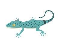 Ilustração isolada do vetor do lagarto réptil azul ilustração do vetor
