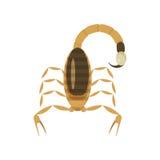 Ilustração lisa do estilo do vetor do escorpião venenoso ilustração royalty free
