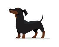 Ilustração lisa do projeto do vetor do cão do bassê ilustração royalty free