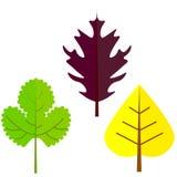 Ilustração lisa do vetor: Silhuetas das folhas da árvore ilustração do vetor
