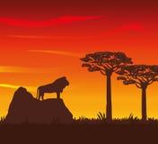 Ilustração lisa sobre o projeto de África Fotografia de Stock Royalty Free