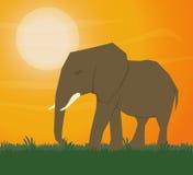 Ilustração lisa sobre o projeto de África Fotografia de Stock