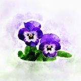 Ilustração na aquarela da flor do amor perfeito ilustração royalty free