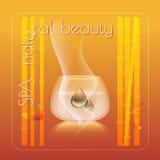 Ilustração natural do vetor do tema da beleza dos termas Imagens de Stock Royalty Free