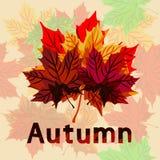 Ilustração no tema do outono e dos feriados do outono Imagens de Stock Royalty Free